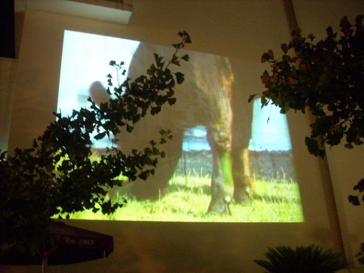 projectionsONlake-3